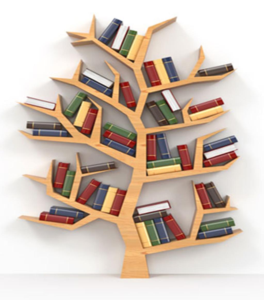 Une bibliothèque à Bordeaux-Nord !